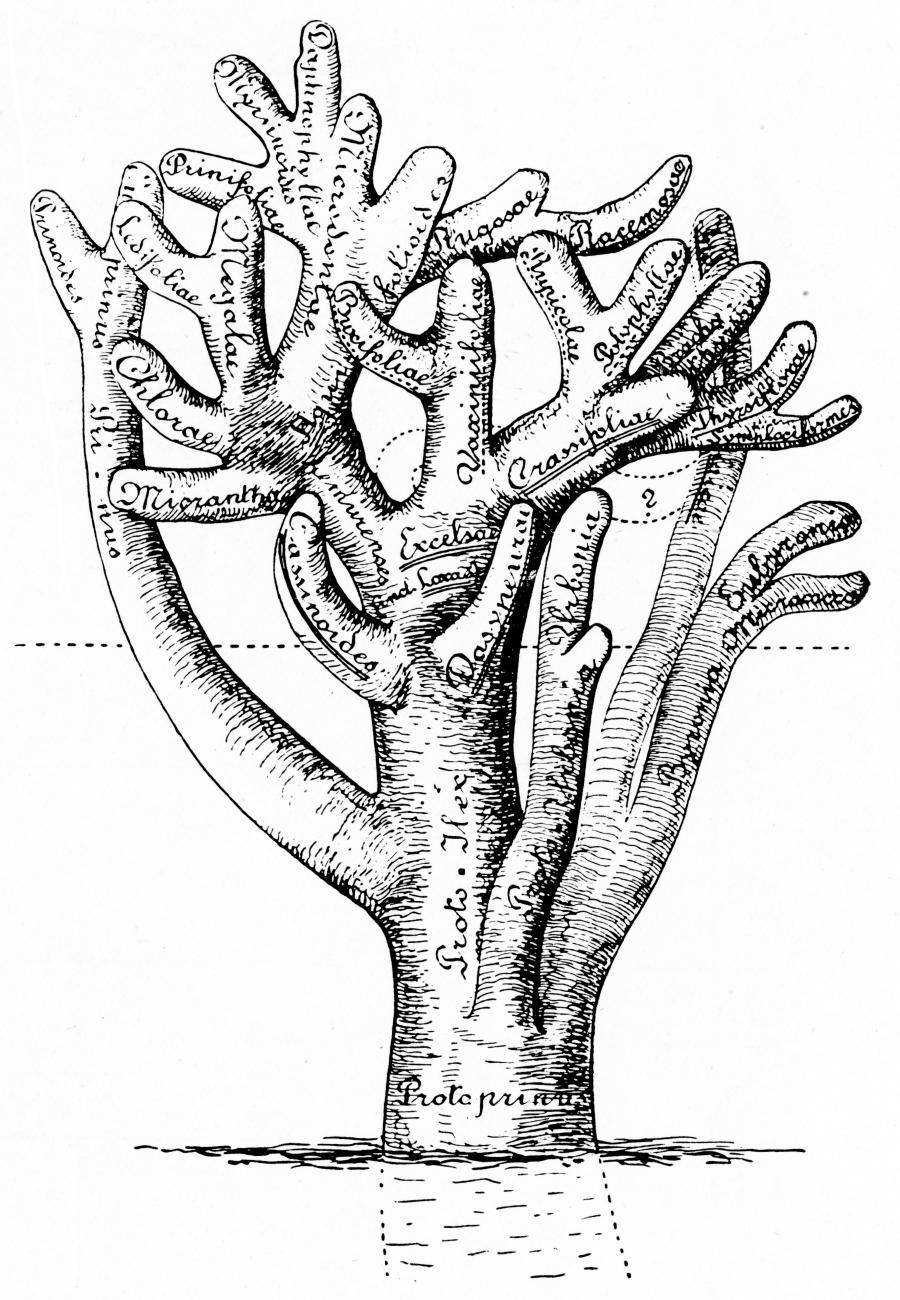 Figure 108