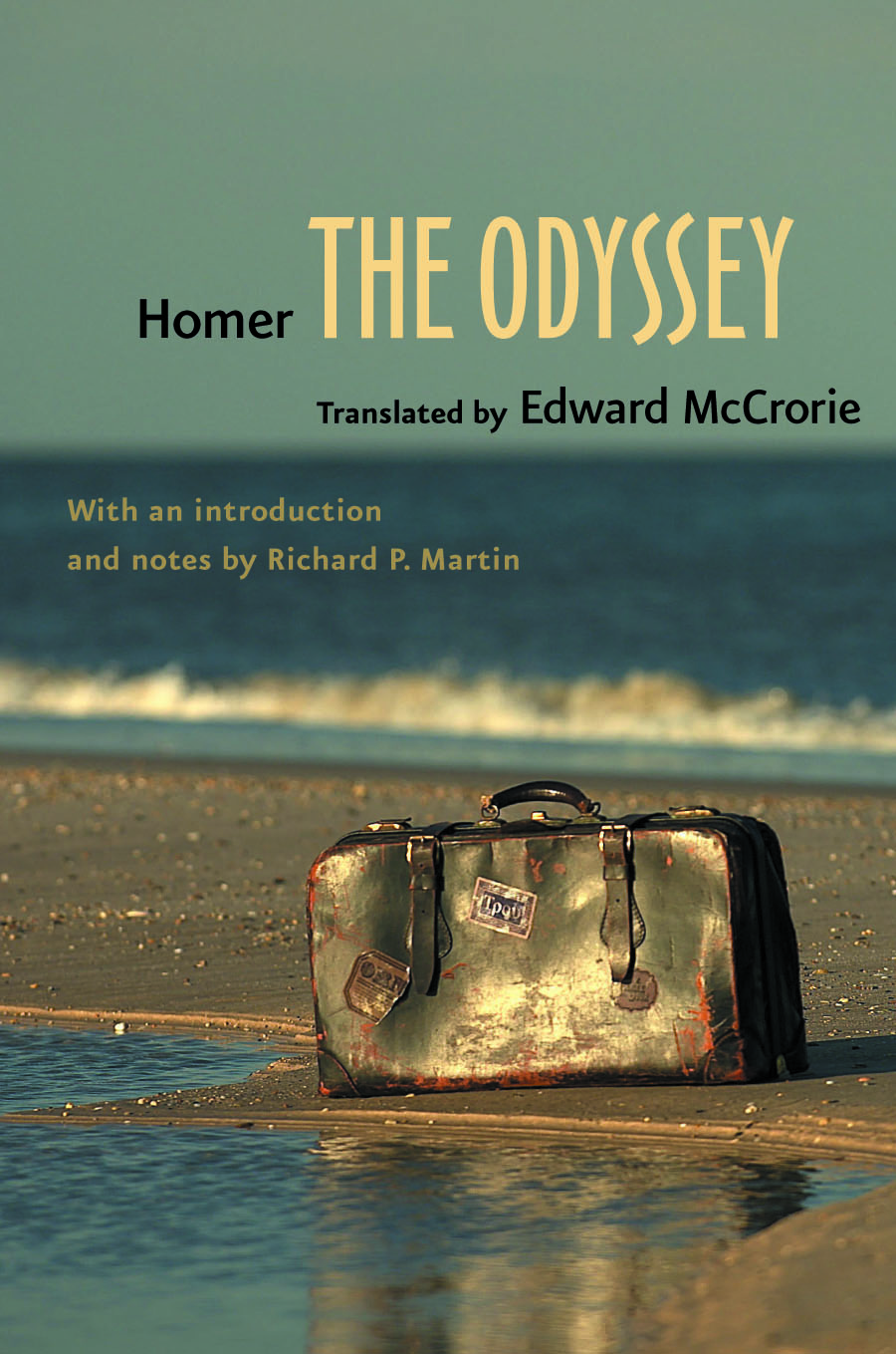 a literary analysis of the feelings and emotions in the odyssey by homer Everything you ever wanted to know about telemachos in the odyssey, written  by  character analysis  notice how homer calls him thoughtful telemachos   he may not be exactly the ruler that his dad is, but we get the feeling that he'll .