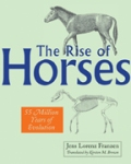 The Rise of Horses, by Jens Lorenz Franzen